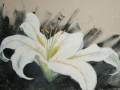 painting-lily3