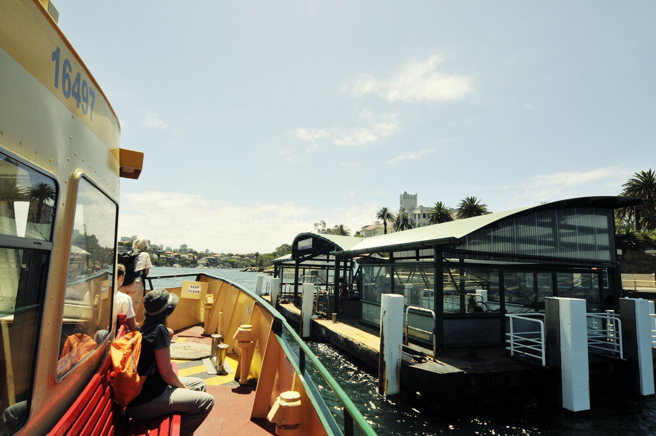 Arriving at Cremorne Point
