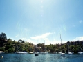 Boats moored in Mosman Bay